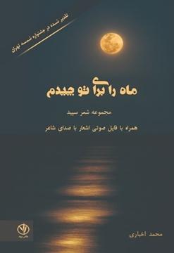 تصویر از ماه را برای تو چیدم